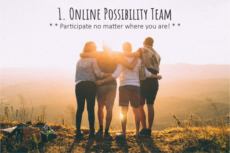 1. Online Possibility Team