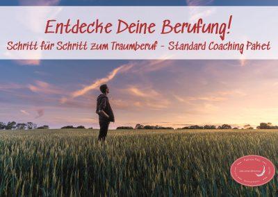 Entdecke deine Berufung! – Standard Coaching Paket