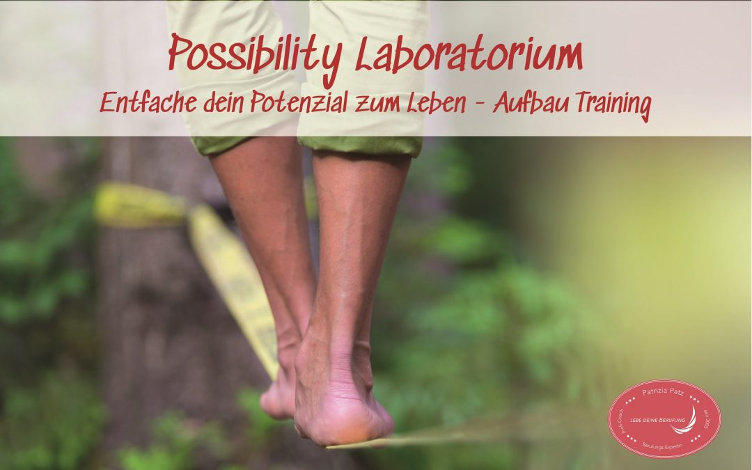Possibility Lab (Aufbau Training)