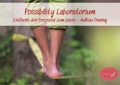 Possibility Laboratorium (Aufbau Training)